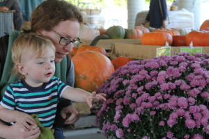 Eli, Mom, Mums (Farmer's Market, Nashville TN)